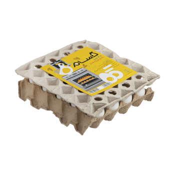 تخم مرغ حسام بسته ۲۰ عددی